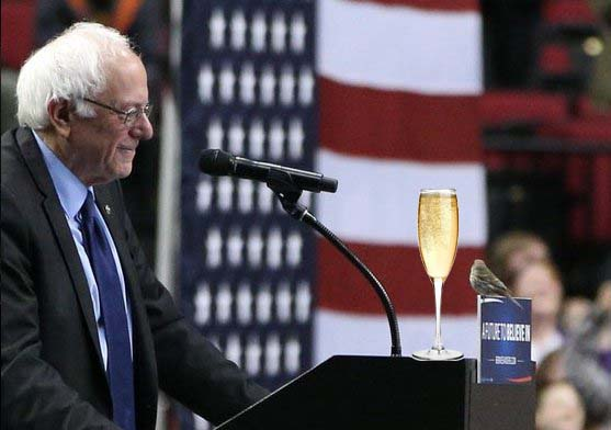 bubbly-sanders